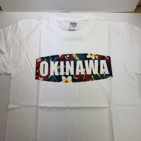 沖縄本島★Tシャツ★沖縄を愛してくれている方必見です!