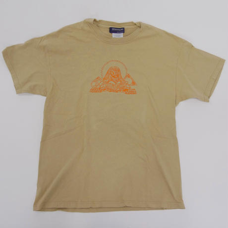 THE PHARAOHS AWAKENING  T-SHIRT