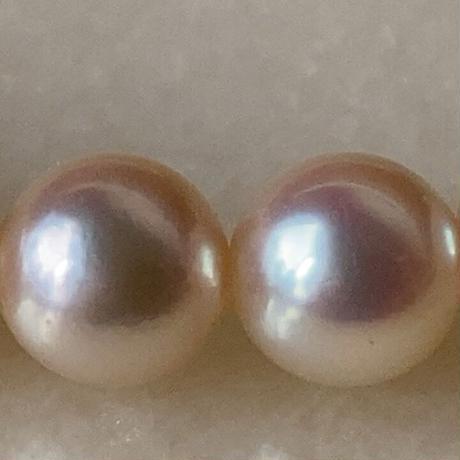 MIKIMOTO  オールドミキモト 本パールネックレス 約6mm玉 真珠/銀 シルバー 全長41cm  ヴィンテージパール