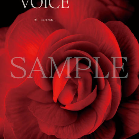 MITSUKI'S VOICE vol.04   -issue Beauty-  PC版