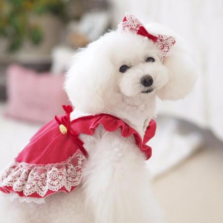 【 Raspberry Sweet 】ラズベリースゥイート  (Mサイズ)