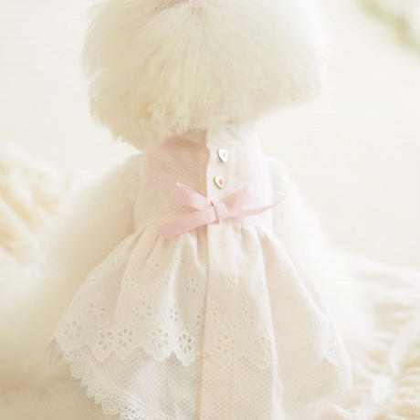 【 Picnic of Marie Antoinette】Trianon Princess(トリアノンプリンセス)サイズP/XS/S
