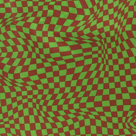 BAGGU / Standard Baggu Green Trippy Checker