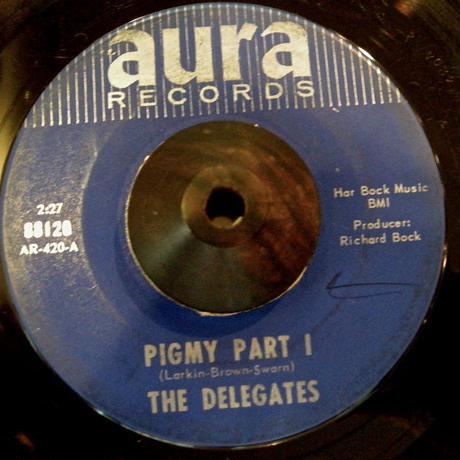 THE DELEGATES / PIGMY