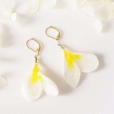 Plumeria Mini Double. 本物のお花 ミニプルメリア ダブルペタルのシンプル耳飾り/揺れピアス/イヤリング