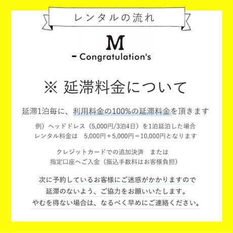 【レンタル】POMPOM冠リボン POP②