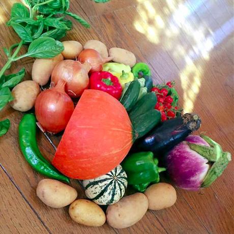 【限定10セット】無農薬 夏のお試し野菜セット(税、送料、夏季クール便込)