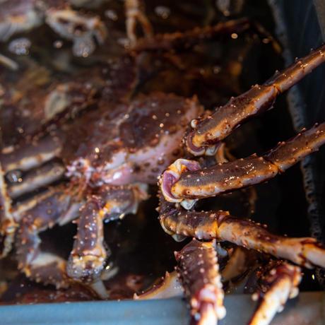 訳ありたらば蟹 姿3.3kg前後(ボイル冷凍)【送料込み】