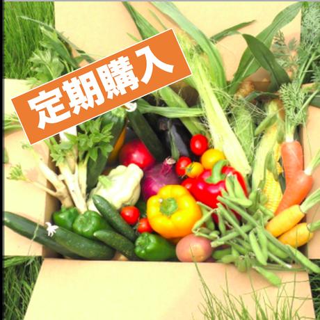 定期購入:今回は自家製「干し柿」+「炒り落花生」同梱!!【12/19まで購入可】まるよし野菜限定BOX 3ヶ月分まとめて注文(今回の注文で3週間ごとに3ヶ月[計4回]お届けします