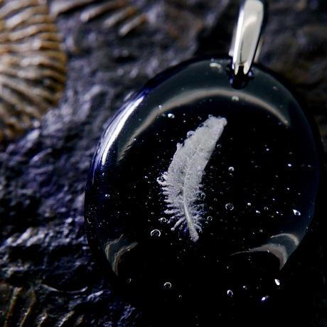 フェザー(feather107)
