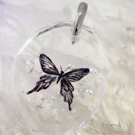 ジャコウアゲハ(butterfly017)