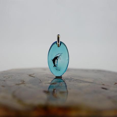 ハンドウイルカ(dolphin415)
