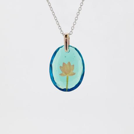 ハス(lotus065)