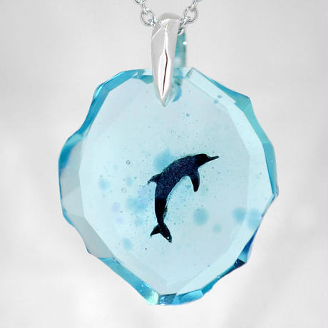 ハンドウイルカ(dolphin411)