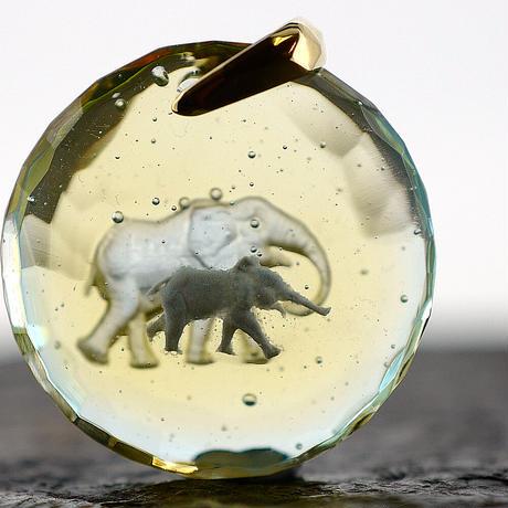 アフリカゾウ(elephant028)