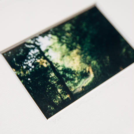 【original print】Wait for Me in the Deep Forest/ (edition 30)