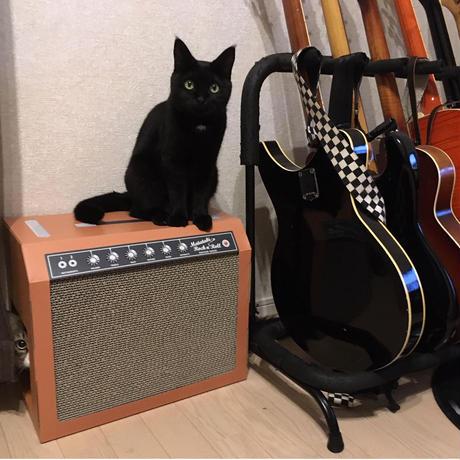 またたびロックンロール ギターアンプ オーカー(爪とぎ)