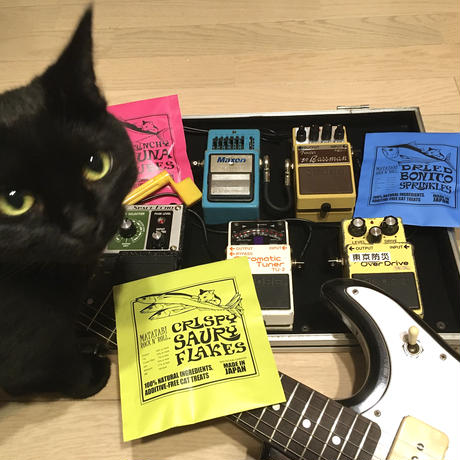 またたびロックンロール ギターアンプ(ブラック)、トリーツ3種パックとお好きなギターのセット