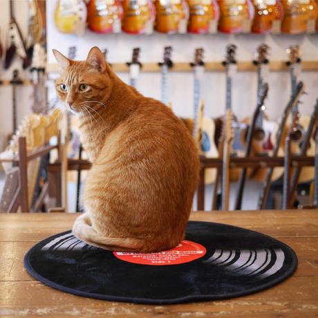 またたびロックンロール ギターアンプ オーカー(爪とぎ)  とレコード(マット)のセット