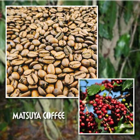 ブラジル セルトン農園 百年樹コーヒー 200g