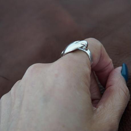 lidon_ring