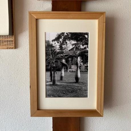 【期間限定販売】富澤大輔/「新乗宇宙」special edition 写真23