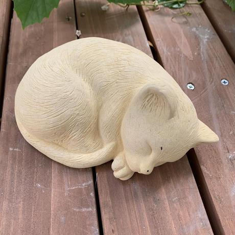 ねむネコ (子猫)