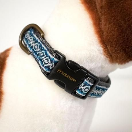 PENDLETON®  PET COLLECTION DOG COLLAR - PAPAGO PARK 首輪 パパゴパーク柄