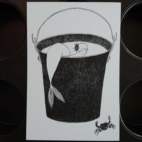 postcard  きいろの戸口「蟹と人魚」