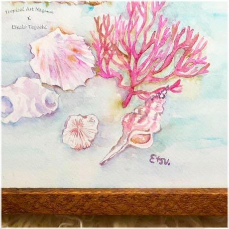 原画:海の宝物