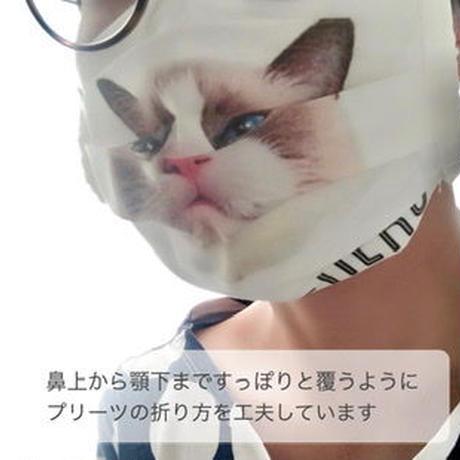 うちの子プリーツマスク|白
