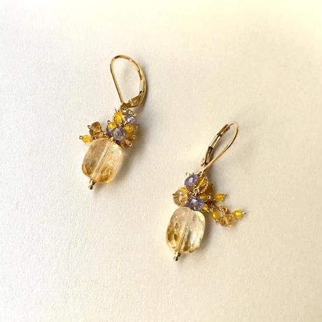 "bouquet pierce & earrings ""Oncidium"""