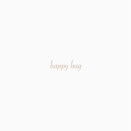 数量限定*happy bag
