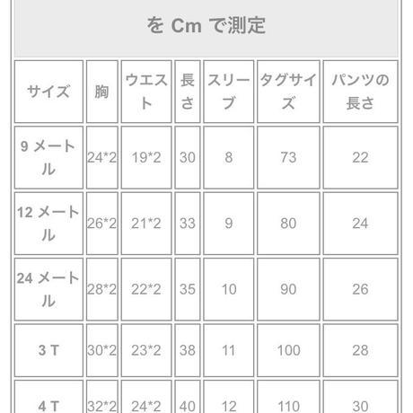 5cc1769e5845c859a7149d8c