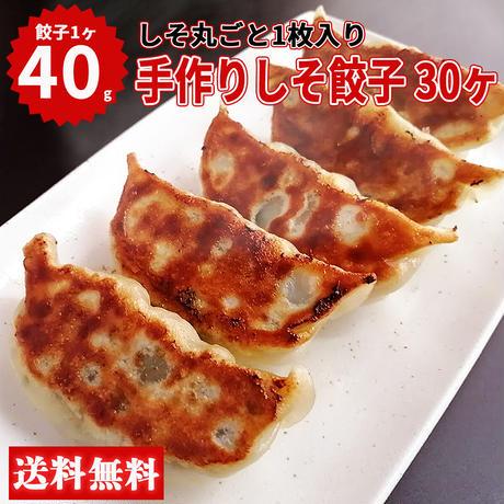 【送料無料】湘南麻生製麺 手作りしそ餃子 40g×30ヶ入