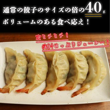 【送料無料】湘南麻生製麺 手作りえび餃子 40g×30ヶ入