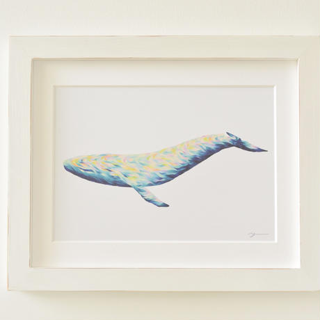 Opal whale マットプリント
