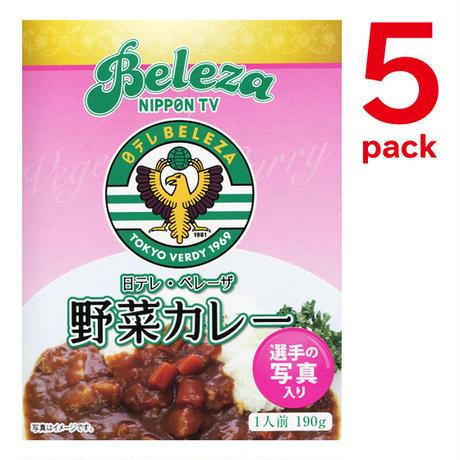 日テレ・ベレーザ『野菜カレー』5個セット