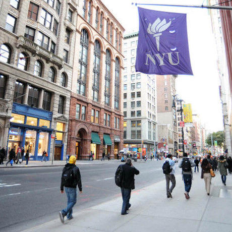 NYU FILM GROVES