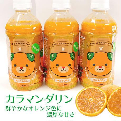 柑橘セット