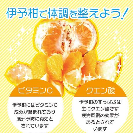 伊予柑果汁100%ジュース(あらしぼり)10本セット