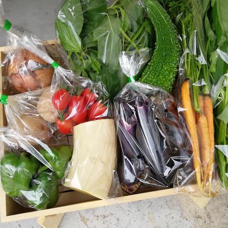 【定期便】季節の野菜セット(Mサイズ/2~3人分)