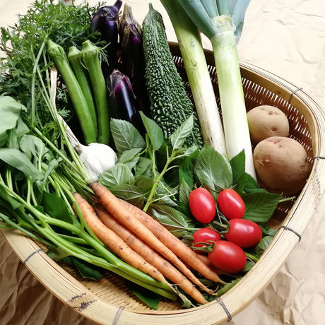 【定期便】季節の野菜セット(Sサイズ/1~2人分)