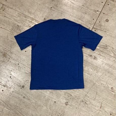 patagonia『Men's Capilene Cool Daily Graphic Shirt』(UESX)