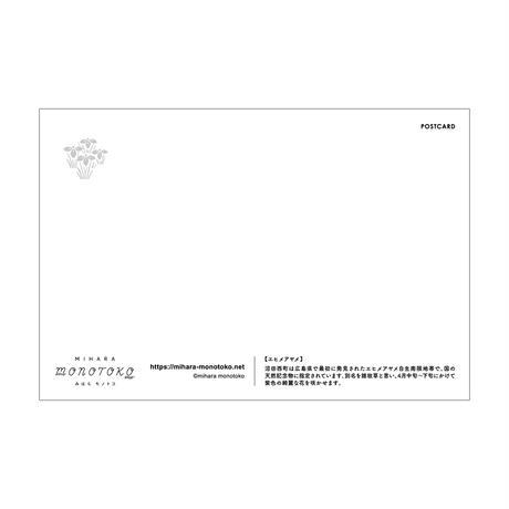 ポストカード【エヒメアヤメ】