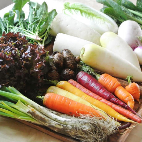 【色んな農家さんの野菜を食べたい方へ】毎回届く農家さんが変わる「わくわく定期便」
