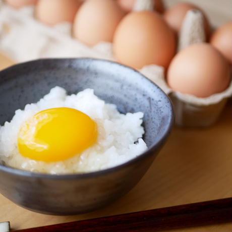 宮崎山鶏の「嬉したまご」山を走り回って育った平飼い・有精卵(10個)