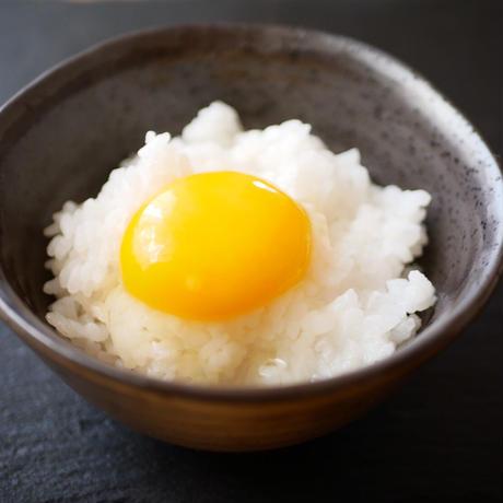 【お得セット】宮崎山鶏の「嬉したまご」山を走り回って育った平飼い・有精卵(30個)