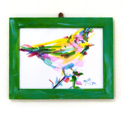 ポジティブ バード〈positive bird〉