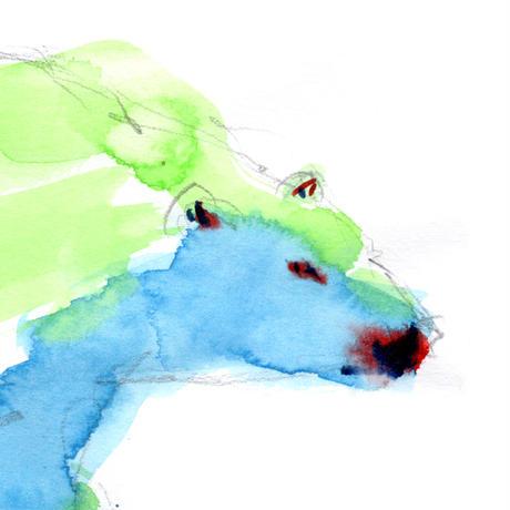 白熊〈Polar bear〉